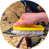 Pretoria rugs cleaning