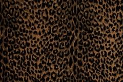 Safari Collection CF REF# UP209-2