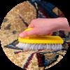 Pretoria rugs cleaning